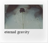 eternal gravity